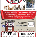 Featured Rock Hill – Central Carolinas Animal Hospital