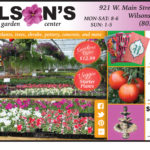 "Our Featured ""Home"" Business this edition is Wilson's Nursery & Garden Center"